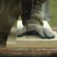 Carpenter 15 - VideoHive Item for Sale