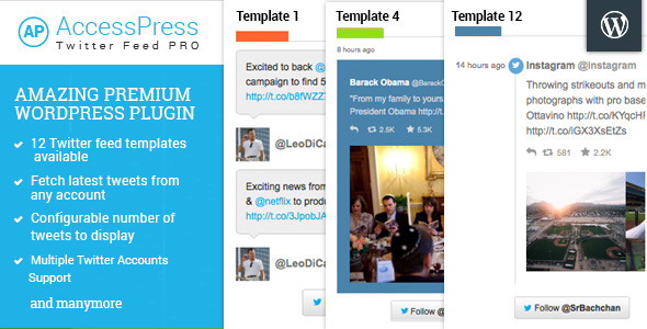 CodeCanyon AccessPress Twitter Feed Pro 11029697