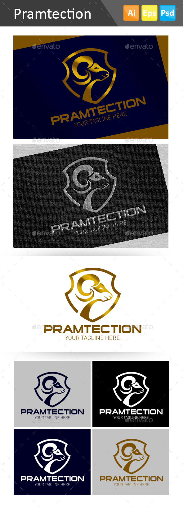GraphicRiver Pramtection 10966627