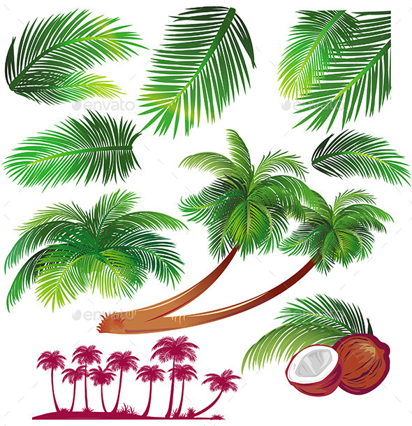 GraphicRiver Tropical Palms 11031517
