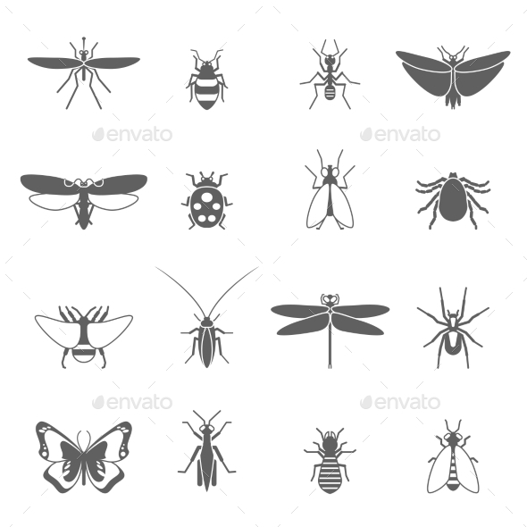 GraphicRiver Insects Black Icons Set 11032973