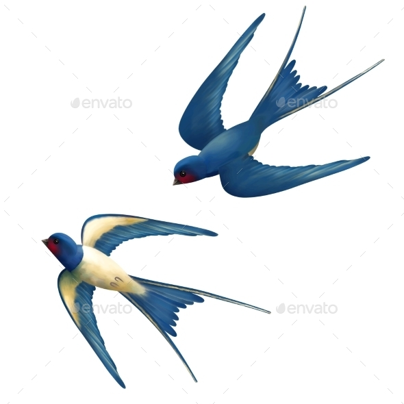 GraphicRiver Vector Flying Swallows 11034875