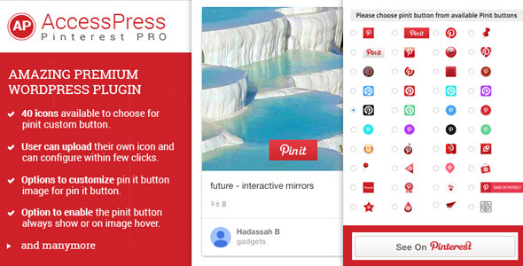 CodeCanyon AccessPress Pinterest Pro 11038373