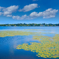 Lake Quannapowitt in Wakefield near Boston - PhotoDune Item for Sale