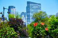 Boston Common park gardens and skyline - PhotoDune Item for Sale