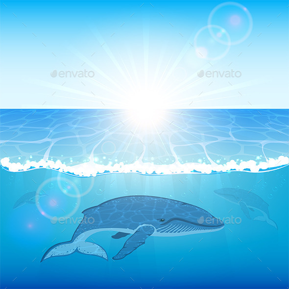GraphicRiver Whales in Ocean 11042209