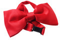 Red Bow Tie - PhotoDune Item for Sale