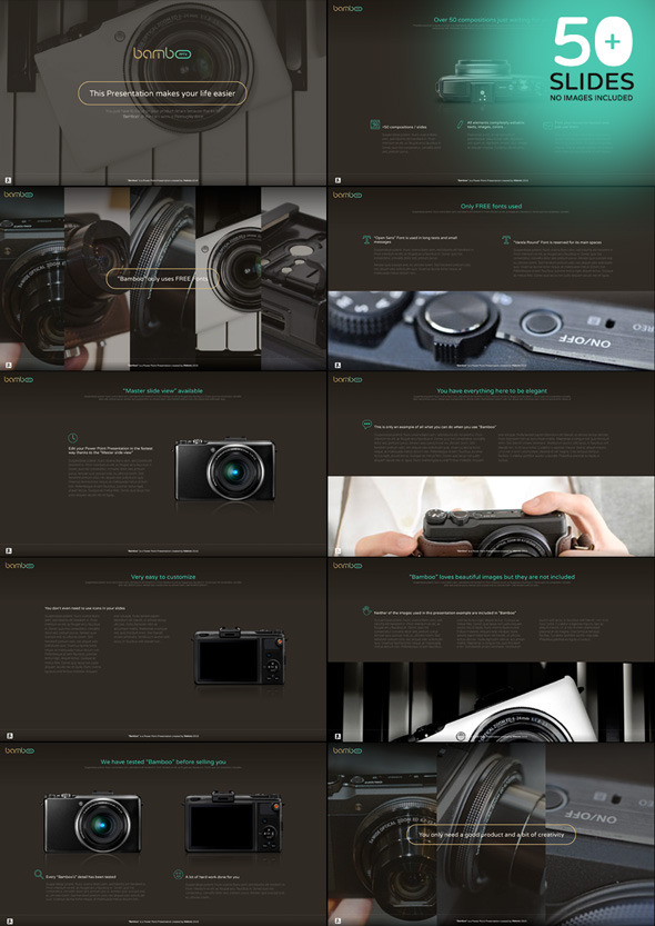 GraphicRiver Bamboo PowerPoint template 11046913