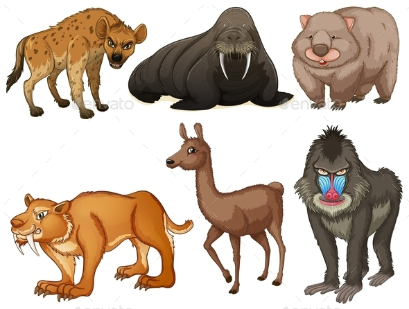 GraphicRiver Rare Animals 11047060