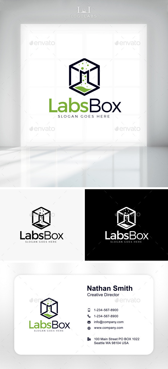 GraphicRiver Labs Box Logo 11047710