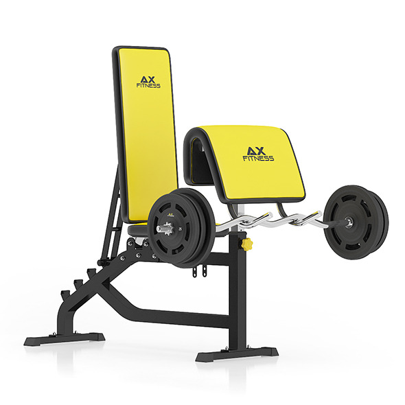 3DOcean Arm Curl Bench 11055209