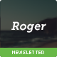 Roger - Responsive E-mail Newsletter - ThemeForest Item for Sale