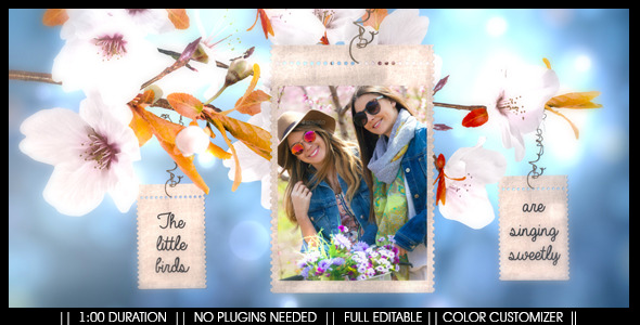 VideoHive Spring Blossom Promo 11056313