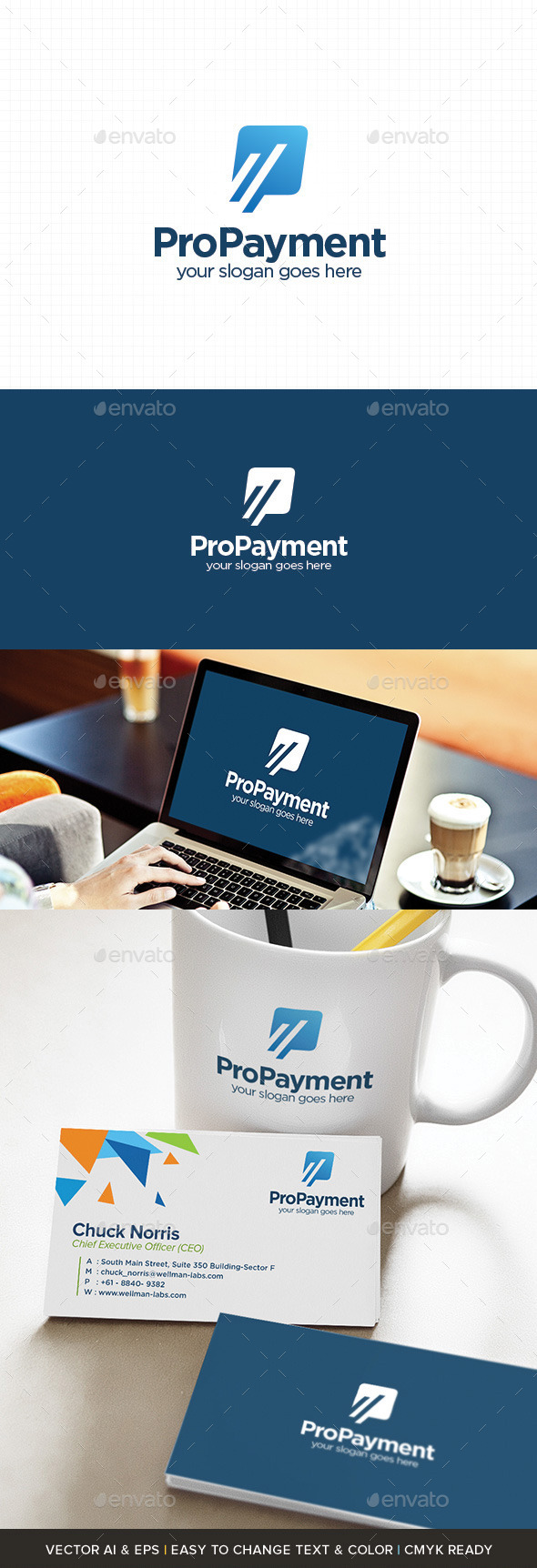 GraphicRiver Pro Payment Logo 11064018