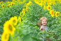 Little boy playing on the sunflower field - PhotoDune Item for Sale
