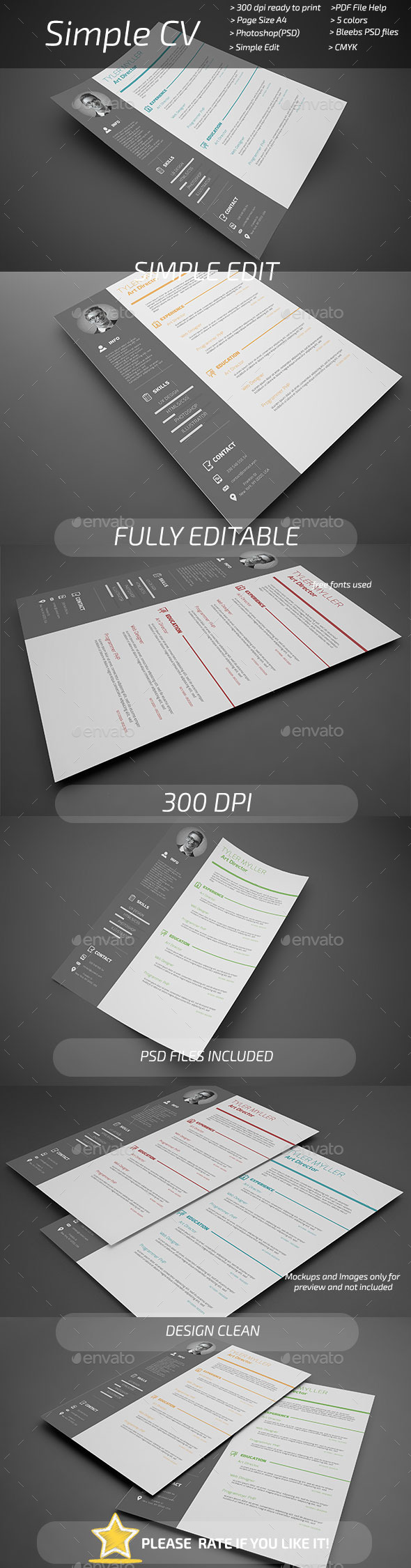 GraphicRiver Simple CV 11069364