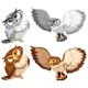 Four  Owls - GraphicRiver Item for Sale