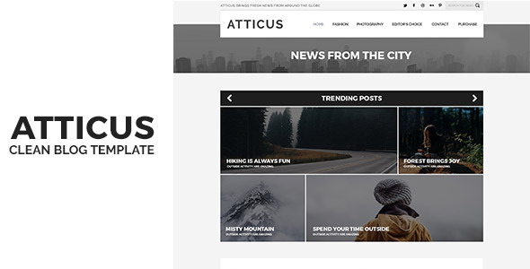 ThemeForest Atticus Minimal & Personal WordPress Blog Theme 11070813