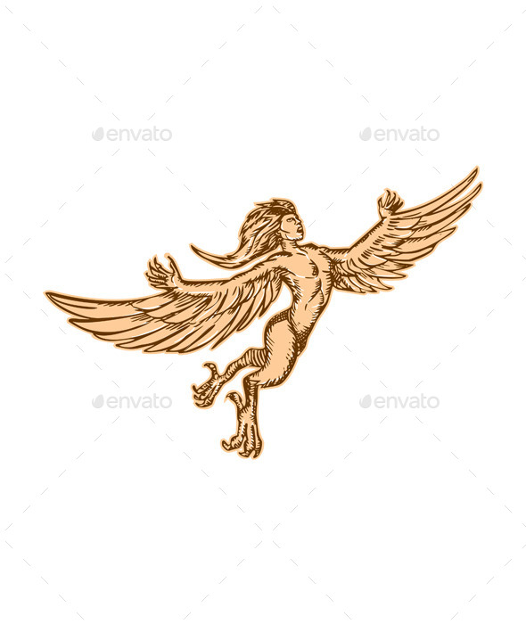 GraphicRiver Harpy Flying Front Etching 11071466