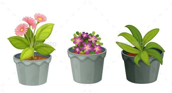 GraphicRiver Plants 11073591