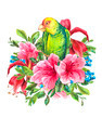 Exotic Vintage Card with Tropical Flowers, Parrots - PhotoDune Item for Sale