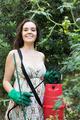 Female gardener spraying tomato plant - PhotoDune Item for Sale