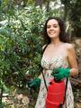 Girl gardener spraying tomato plant - PhotoDune Item for Sale