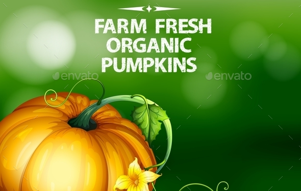 GraphicRiver Pumpkin 11085878