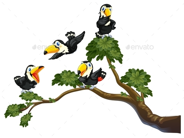 GraphicRiver Toucan and Tree 11086306
