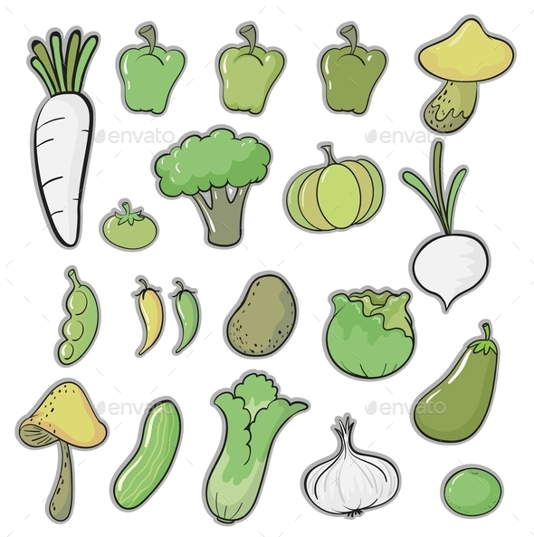 GraphicRiver Various Vegetables 11087222