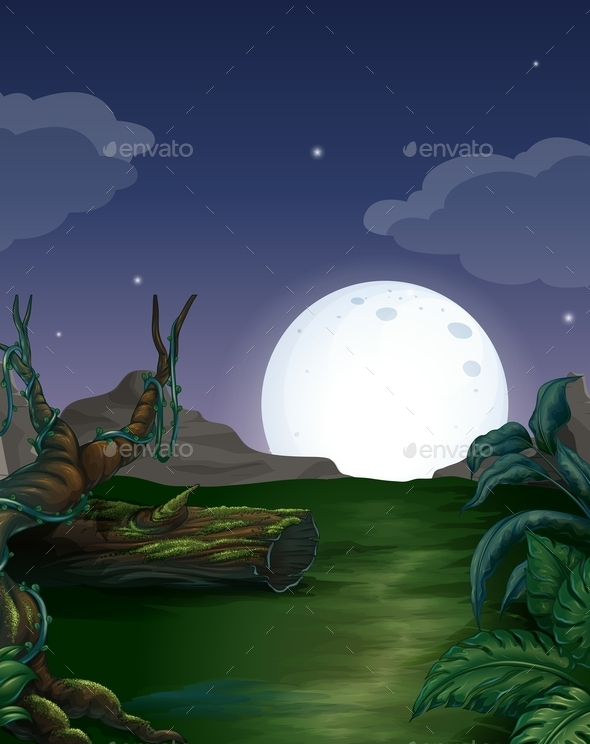 GraphicRiver Forest at Night 11087645