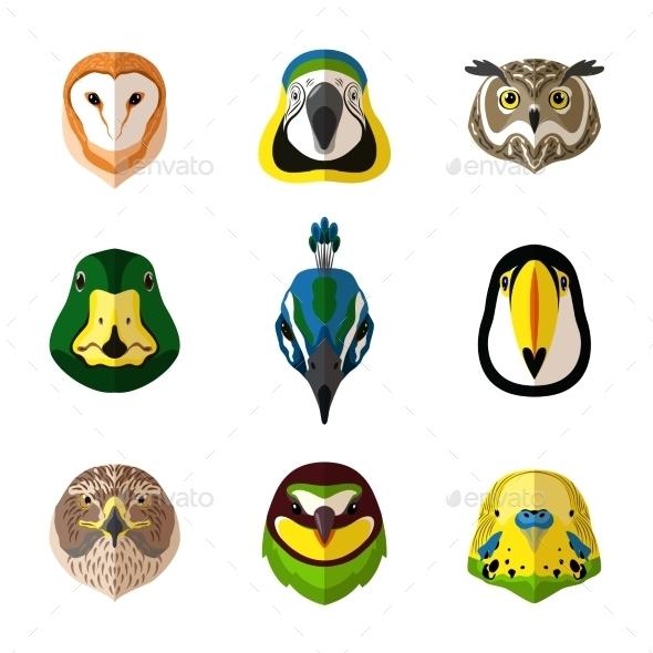 GraphicRiver Wild Bird Set 11087812