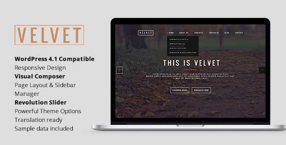 ThemeForest Velvet Responsive OnePage WordPress Theme 11090089