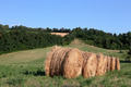 Italian countryside landscape in Tuscany - PhotoDune Item for Sale