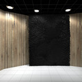 Empty room with Black Carpet on Wooden wall - PhotoDune Item for Sale