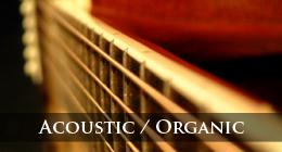 Acoustic / Organic / Folk