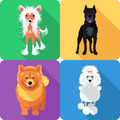 Set dog head icon flat design - PhotoDune Item for Sale
