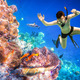 Snorkeler Maldives Indian Ocean coral reef. - PhotoDune Item for Sale