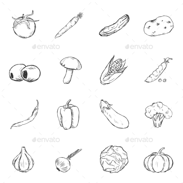 GraphicRiver Set of Sketch Vegetables Icons 11103187