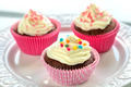 Colourful Chocolate Cupcakes - PhotoDune Item for Sale