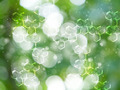 Abstract background from fresh morning dew. - PhotoDune Item for Sale