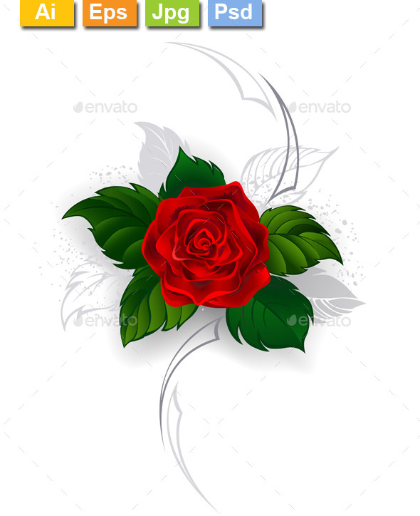 GraphicRiver Blooming Red Rose 11110844