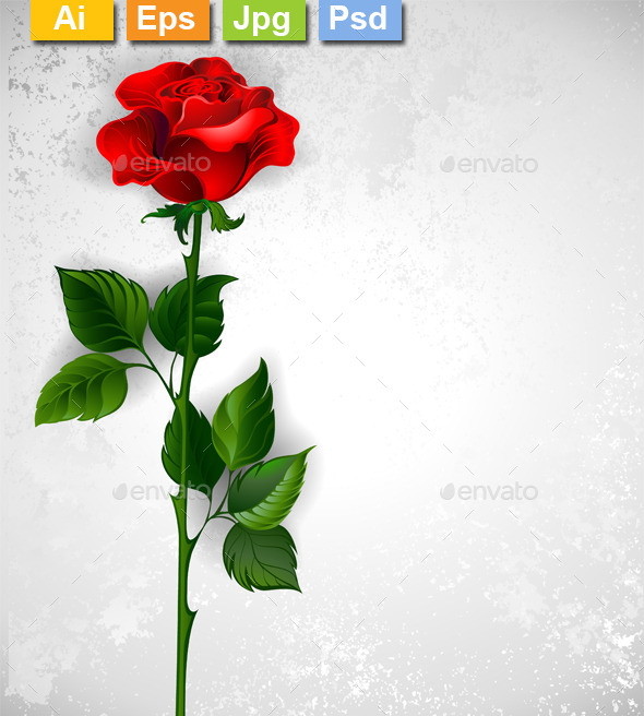 GraphicRiver Straight Red Rose 11111229