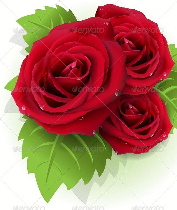 GraphicRiver Rose 137572