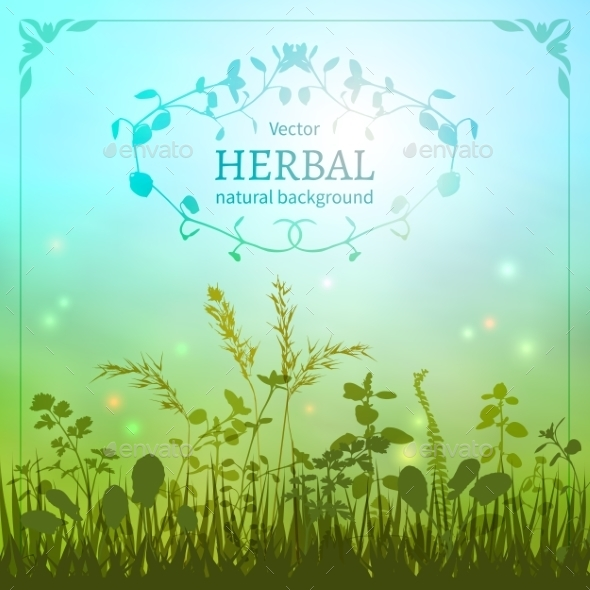 GraphicRiver Herbal Background 11116853