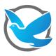 Birdy, Bird Logo - GraphicRiver Item for Sale