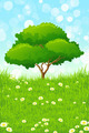 Green Landscape with Tree - PhotoDune Item for Sale