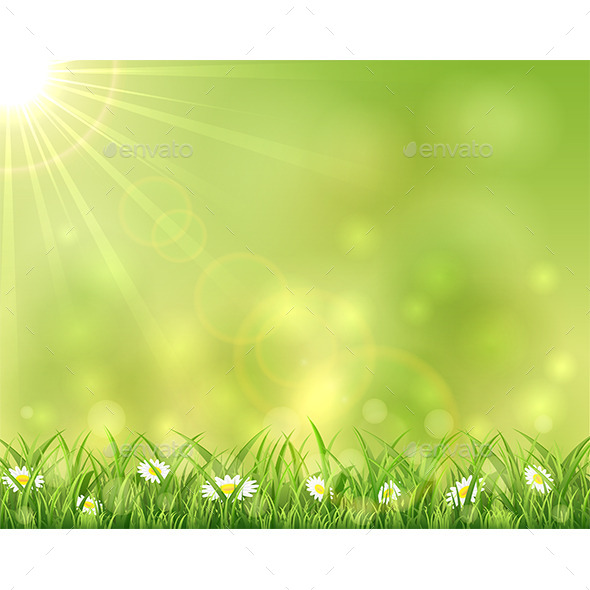 GraphicRiver Sunny Background with Grass and Flowers 11122919