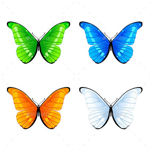 GraphicRiver Butterflies 11123003
