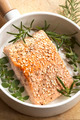 Salmon Fillet with Sesame Seeds and Herbs - PhotoDune Item for Sale